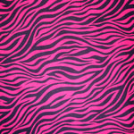 Nu Suede Zebra Hot Pink Bedding, Accessories & Room Decor