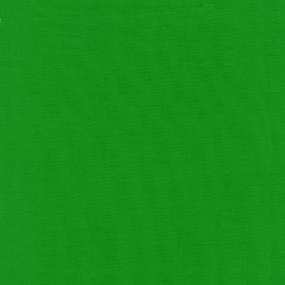 Kelly Green Fabric