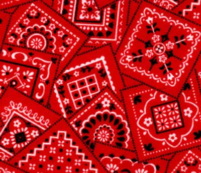 Red Bandana Fabric