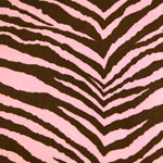 Chocolate Zebra Bedding & Accessories