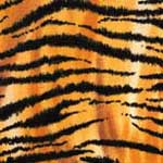 Tigers Animal Print Bedding & Accessories