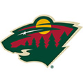 Minnesota Wild NHL Bedding & Room Decor