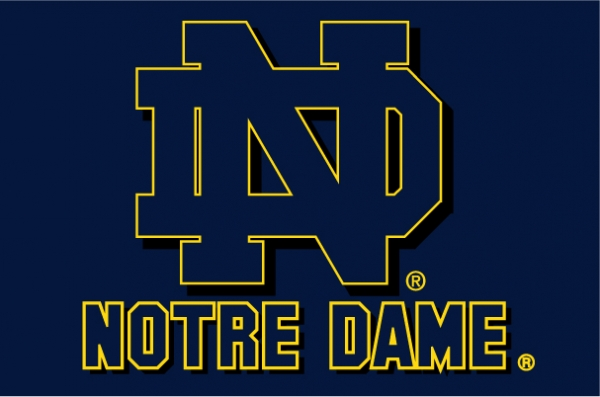 Notre Dame Fighting Irish Ncaa College 39 Quot X 59 Quot Acrylic