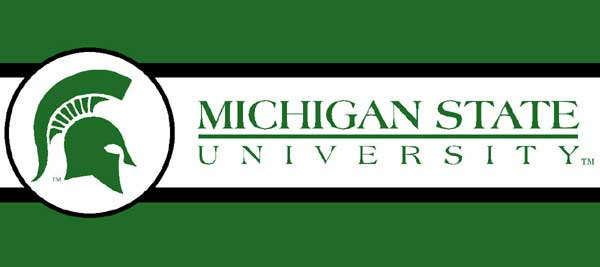 Michigan State Spartans 7 Quot Tall Wallpaper Border