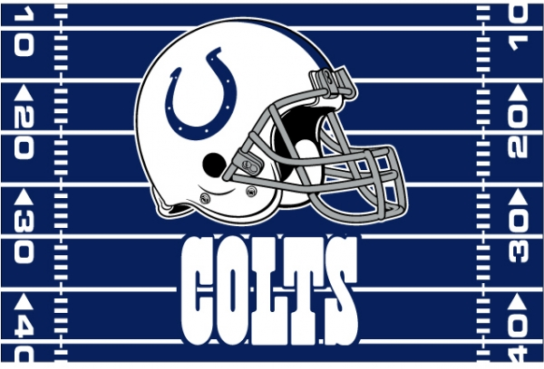 Indianapolis Colts Nfl 39 Quot X 59 Quot Tufted Rug