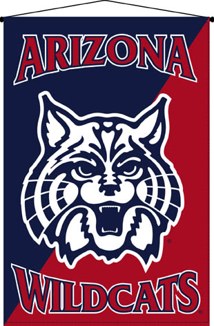 Arizona Wildcats 29 X 45 Deluxe Wallhanging