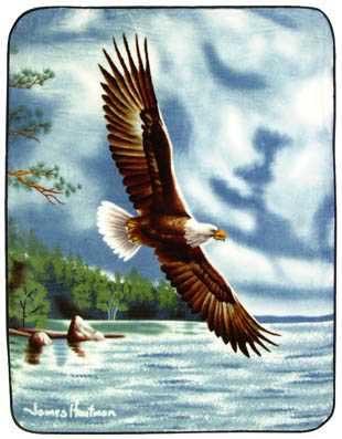 Summertime Eagle Blanket Throw