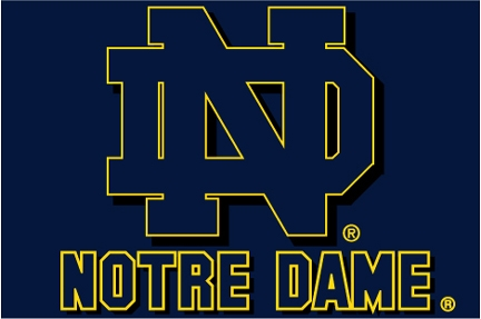 Notre Dame Fighting Irish Ncaa College 20 Quot X 30 Quot Acrylic