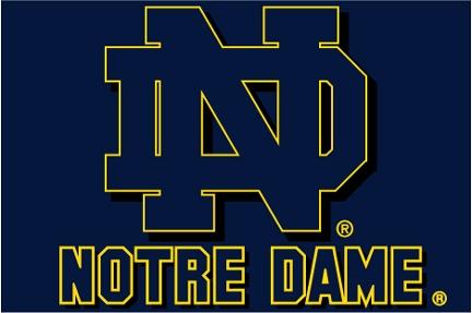 Notre Dame Fighting Irish Ncaa College 20 Quot X 30 Quot Acrylic