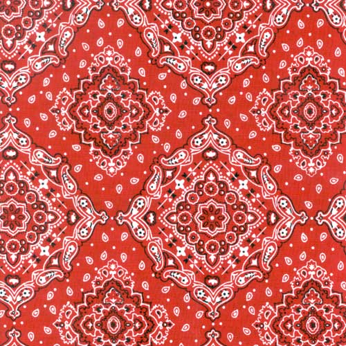 Calamity Pillow Case Red Bandana