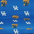 Kentucky Wildcats Ncaa College Soup Of The Day Mascot Figurine