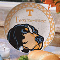 "Tennessee Vols NCAA College 11"" Gameday Ceramic Plate"