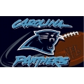 "Carolina Panthers NFL 20"" x 30"" Tufted Rug"