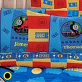 Thomas Ticket to Ride Pillow Case