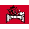 "Arkansas Razorbacks NCAA College 20"" x 30"" Acrylic Tufted Rug"
