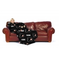 Philadelphia Flyers NHL The Comfy Throw� by Northwest�